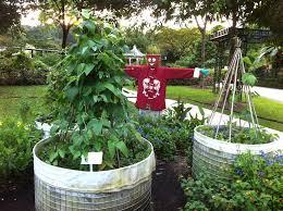 download gardening bed ideas solidaria garden