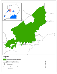 Map Of Uganda Map Of Budongo Forest Reserve Location Map Of Budongo Forest