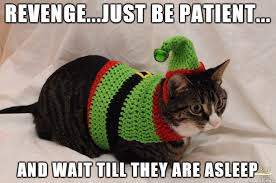 Cat Christmas Memes - christmas cat 2017 meme imgur