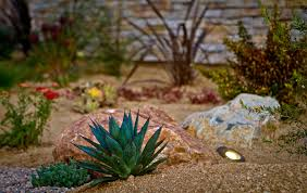 San Diego Landscape by Drought Tolerant Landscaping Ideas From San Diego