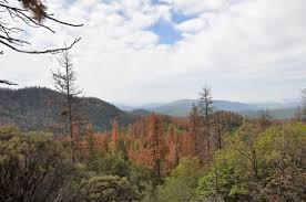 Blm Lightning Map Lightning Sparking More Boreal Forest Fires Nasa