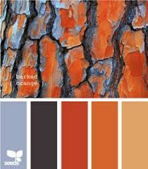 Autumn Color Schemes Warm Cozy And Fresh Color Palette It Perfectly Combines The