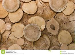 abstract wood log background up stock photo image 11746094