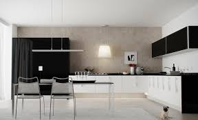 black white kitchen designs impressive modern black and white kitchen design pics