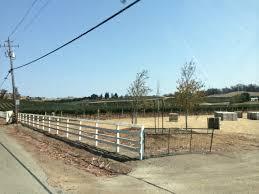 Lachini Vineyards Sonoma Coast Pinot Noir La Cruz Vineyards