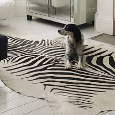 Blue Animal Print Rug Congenial Decor Idea Zebra Stripe Area Rug Pink Along With Brown