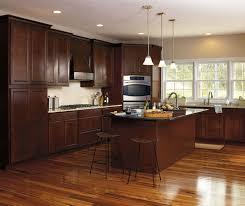 Light Brown Kitchen Cabinets Kitchen Dark Maple Kitchen Cabinet With Light Brown Wall Color