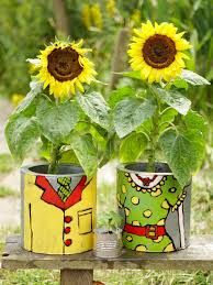 Unusual Planters For Container Gardens How To Plant Sunflowers In Decorative Pots Hgtv