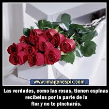 bonitas de rosas rojas con frases de amor imagenes de amor facebook imagenes de ramos de rosas con frases de amistad