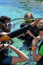 25 best padi dive courses ideas on pinterest padi diving scuba