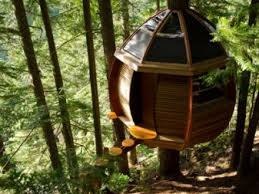 Craigslist Cottage Grove by Materials On Craigslist Used To Build Treehouse Business Insider