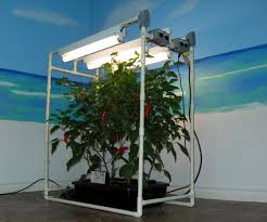workshop hydroponics featured instructables my indoor dwc system