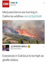 California Meme - dopl3r com memes cnn cnn cnn marijuana farms are burning in