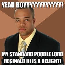 Reginald Meme - standard poodle memes image memes at relatably com