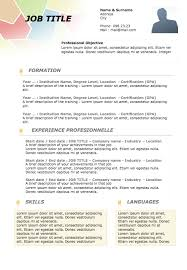 Example Of Resume Profile by Resume Profile Examples Original Resume 16 Examples Of Resumes