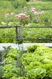 129 best vegetable garden potager images on pinterest plants