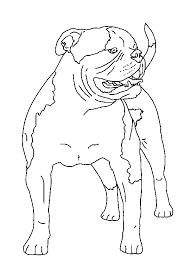 graphics for american bulldog graphics www graphicsbuzz com