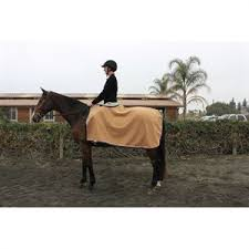 Horse Rug Racks For Sale Horse Exercise Rugs Dover Saddlery