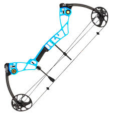 best compound bow for beginners u2013 2017 reviews and buying guide
