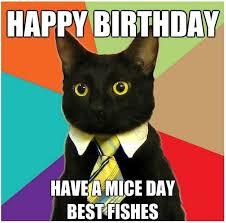Funny Cat Birthday Meme - best 25 cat happy birthday meme ideas on pinterest cat birthday