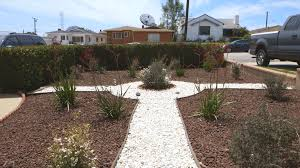 best 25 california native landscape 5 water saving ways to replace lawns during california u0027s drought