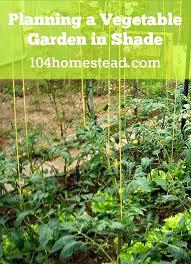 shade vegetable garden impressive shade cloth over vegetable