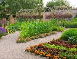 Kitchen Garden Designs 250 Best Kitchen Gardens Images On Pinterest Gardening Veggie