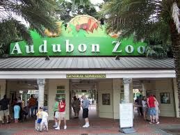 Ottoman Zoo Audubon Zoo New Orleans All You Need To Before You Go