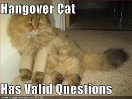 Funny Hangover Memes - funny running from prozac