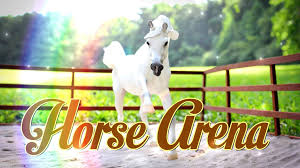 diy how to make doll arena breyer horse arena schleich