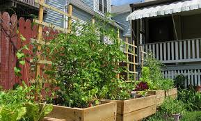 5 ways to use a small urban backyard care2 healthy living