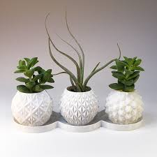 geometric planter set of succulent planters set small office