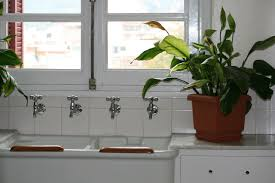 Ecofriendly Cleaning Methods For Your Kitchen The Zeit - Simply kitchen sinks