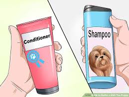 Make Bathtime Fun For Your Dog How To Bathe A Shih Tzu Puppy 15 Steps With Pictures Wikihow