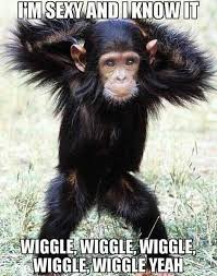 Funny Sexy Memes - vh funny chimp wiggle animals sexy and i know it