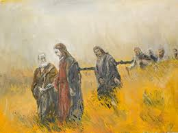 knowing christ today soul shepherding
