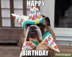 Birthday Dog Meme - happy birthday meme birthday dog 58472 memeshappen