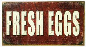fresh eggs tin sign farm country kitchen decor farmers market