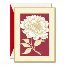 card invitation design ideas boxed greeting cards hallmark costco