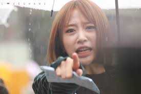 Make A Picture Into A Meme - this is so stupid time to make hani into another meme asian junkie