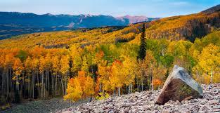 5 fall foliage spots colorado mountains u2014 ryan wright