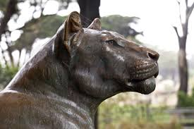 lioness statue bronze lioness statue clippix etc educational photos for students