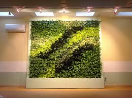 indoor green wall with amazing pattern of the plants design of