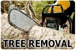 call for a free estimate 856 430 9683