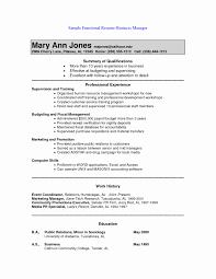 resume in pdf format hybrid resume pdf professional resume templates