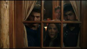 cabin fever movie 2002 cabin fever review remake of eli roth s original is pointless