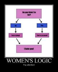 Meme Woman Logic - women logic 11