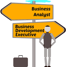 Ba Roles And Responsibilities It Business Analyst U0026 Business Development Executive The