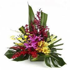 Send Flower Gifts - send flowers gifts and cakes to bangalore online with cakeflora com