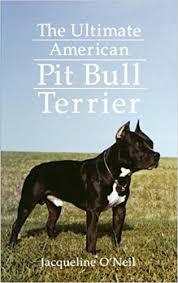 l american pitbull terrier a p b t the ultimate american pit bull terrier jacqueline o u0027neil